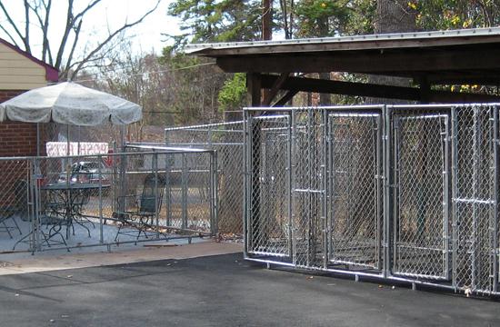 Kennel Area At Grateful Pets Professional Dog Amp Pet