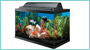 Grateful Pet Supplies has a large variety of aquariums for saltwater & freshwater pet fish in Charlotte NC